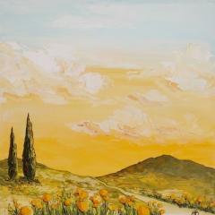 orange Provence