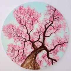 Cerisier-en-fleurs