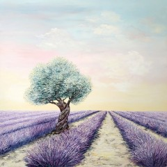 Douceurs-de-Provence